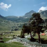 Refugio Wallon