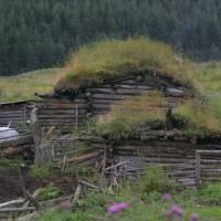 Kavkaz, Duut - dům s trávou