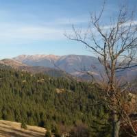 Pohled na Nízké Tatry