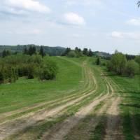 Na hlavním hřebenu Javorníků - louky a cesta