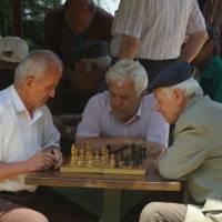 Pogradec, šachy