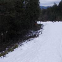 Sjezdovka v Ružomberoku (ve výšce asi 700 m. n m.), kde není umělý sníh, není nic.
