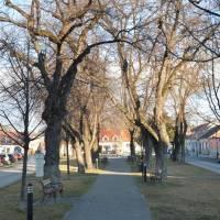Skalica - centrum