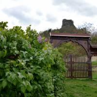 Hajnáčka - brána zříceninu stejnojmenné hradu