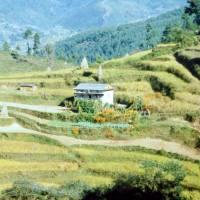 Začátek treku k Everestu, nad vesnicí Jiri