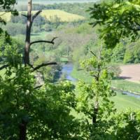 Ráno nad řekou Oslavou: V Koucourách