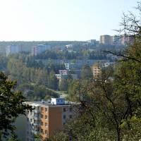 Kohoutovice