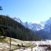 Dolina Malej Laki a vzadu hora Kondratova kopa