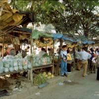 Tržiště: jsme v subtropech, takže i banány a citrusy