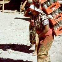 Beni: nosička nápojů