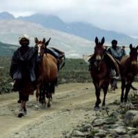 Pláně Deosai Plains, domorodci s koňmi