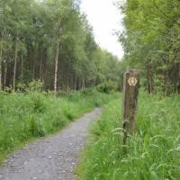 Cesta po břehu jezera Loch Lomond