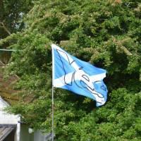 Skotská vlajka a odkaz na loňské referendum (YES= hlasuji pro samostatné Skotsko)