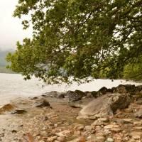 Na břehu jezera Loch Lomond