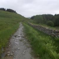 Na West Highland Way: údolí Glen Falloch