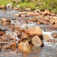 Black Mount, potok