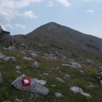 Planina Hajla, v nejvyšších partiích hřebene (značka)