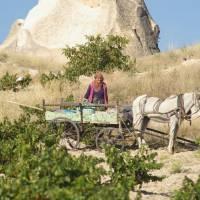 Kapadocie, zemědělství