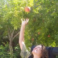 Anemuryum, jablko poznání