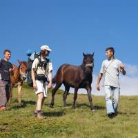 Šar planina, Bob a koně