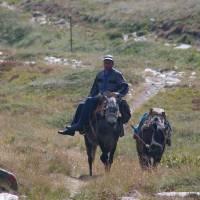 pohoří Baba, pán na oslu