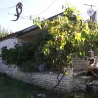 Foto: Evča