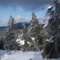 Pohled na Kralický Sněžník z Malého Sněžníku