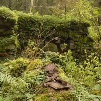 Pěkný potok (Wunderbach) - zaniklý mlýn
