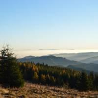 Hřeben Predné hoľe, pohled k východu