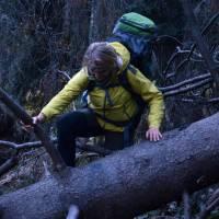 Lucka v lese
