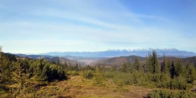 Vysoké Tatry zpod Kráľovy hole