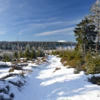 Rychlebky. Pohled od Smrku na Kralický Sněžník