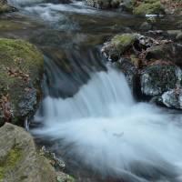 Rychlebky, Račí potok