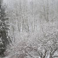 Pohled z okna našeho domu