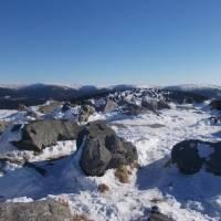 Dlouhé stráně, vzadu Petrovy kameny, Vysoká hole, Velký máj, Jelení hřbet, Břidličná hora