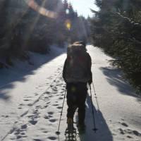 Cestou na Medvědí vrch