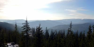 Z pod Medvědího vrchu pohled na hlavní hřeben Jeseníků