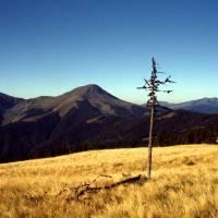 Maramureş – asi pohled na horu Fărcăul, nejvyšší horu pohoří