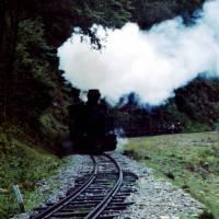 Maramureş – lesní železnice v údolí Apa (Vaser) - vlak