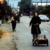 Maramureş – vesničanka s vozíkem