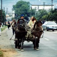 Maramureş – koňský povoz