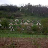 Ves Hercekút, vinné skepy (Tokajská oblast)