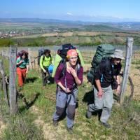 Výstup vinicí na horu Tokaj (Tokaji-hegy)